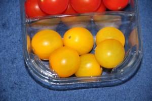 Tomates amarillos -dorados.