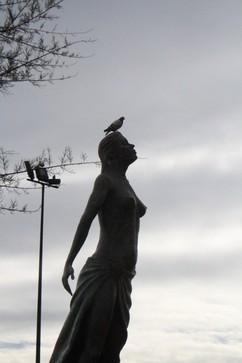 Mediterránea con paloma en la cabeza