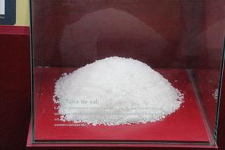 La importancia de la sal