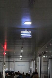 Lo solar se complementa con fluorescentes