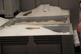 Cajas con sal. En estas cajas hay cinco jamones.: capa de sal, jamón, capa de sal, jamón... así cnco veces