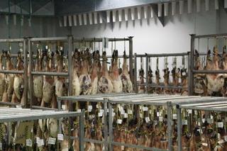 Cada jamón lleva una etiqueta de cuándo entró en el secadero