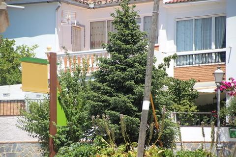 Pinsapo en Yunquera