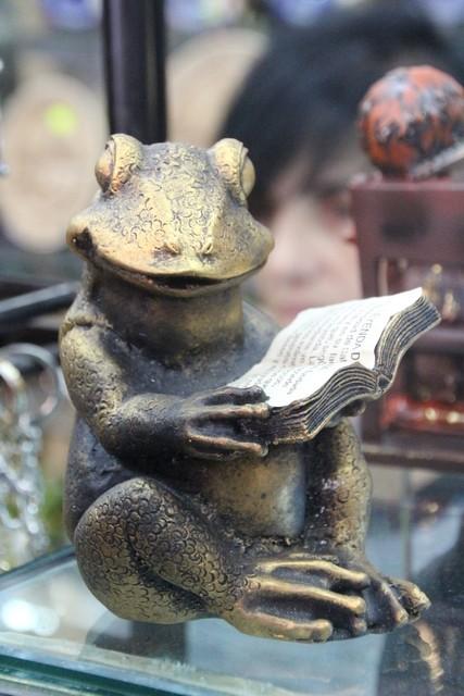 La rana leyendo. ¿Ya habrá conseguido el título de doctor por la universidad de Salamanca?