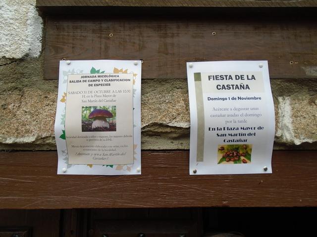 En una pared vemos dos anuncios, uno sobre una jornada micológica y otros sobre la fiesta de la castaña.