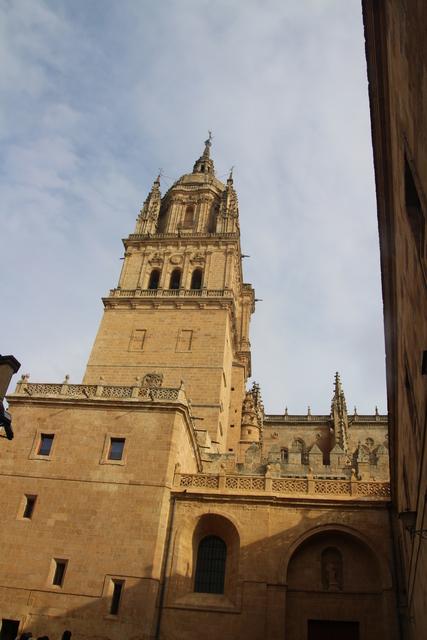 La misma catedral nueva vista con un poco de ampliación.
