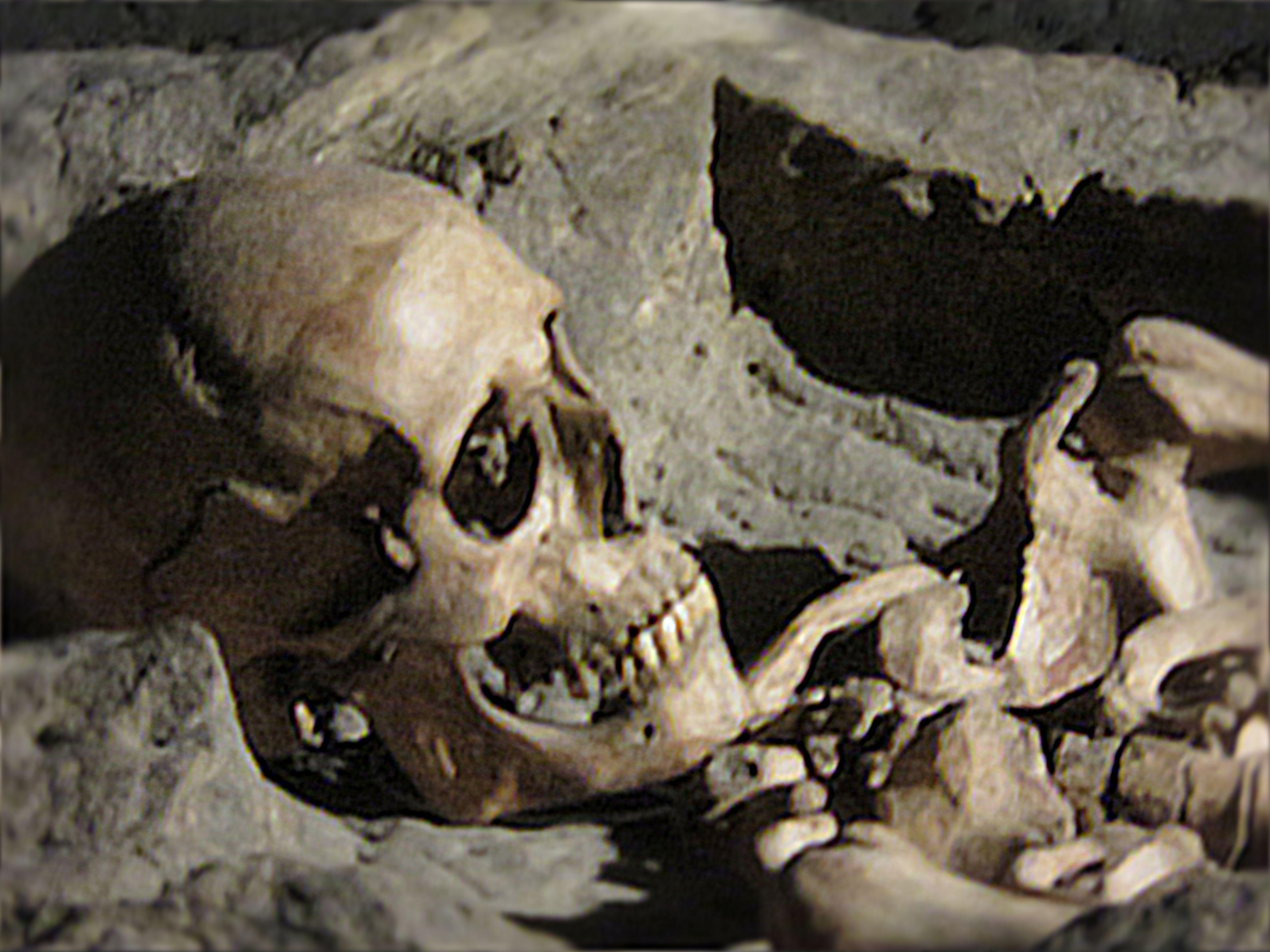 Detalle de la calavera en el sarcófago.