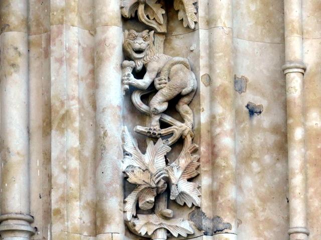 Mono comiendo helado en la catedral de Salamanca.