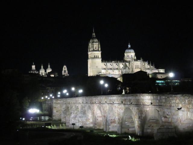 Puente romano y de izquierda a derecha: universidad pontificia, campanario del antiguo edificio de la universidad de Salamanca, Catedral nueva y edebajo de la cúpula de la derecha la catedral vieja, y esa pequeña mancha de luz azulada es la Casa Lis.