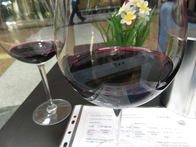 Pedimos unos vinos de la tierra. Bien un Ribera de Duero, bien uno de toro. Terminamos probando los dos.