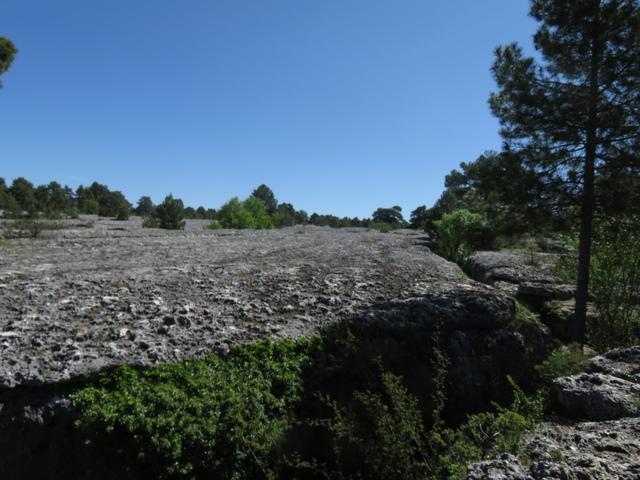 Olas de piedra congeladas en el tiempo