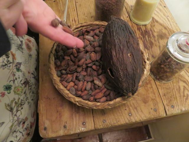 La vaina grande, marrón, a la derecha es la que contoene las semillas del cesto.
