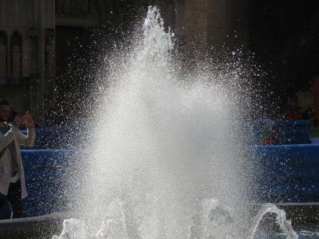 Agua y sol producen el milagro de la huerta valenciana.